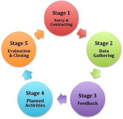 Process analysis sample essay